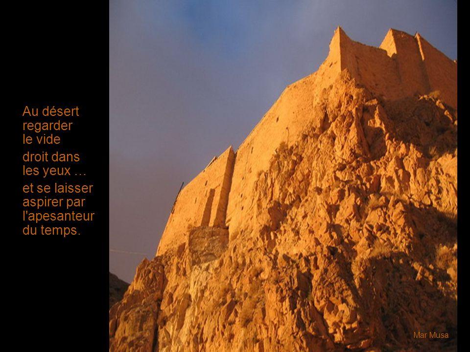 Au désert regarder le vide droit dans les yeux … et se laisser aspirer par l'apesanteur du temps. Mar Musa