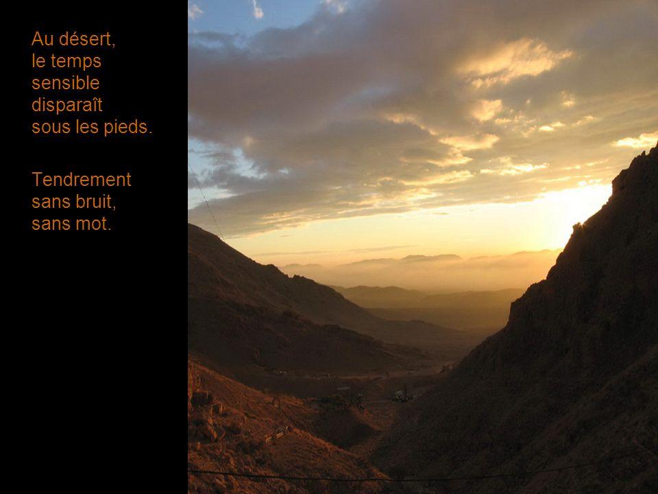 Au désert, le temps sensible disparaît sous les pieds. Tendrement sans bruit, sans mot.