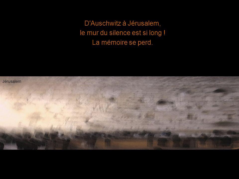 D'Auschwitz à Jérusalem, le mur du silence est si long ! La mémoire se perd. Jérusalem