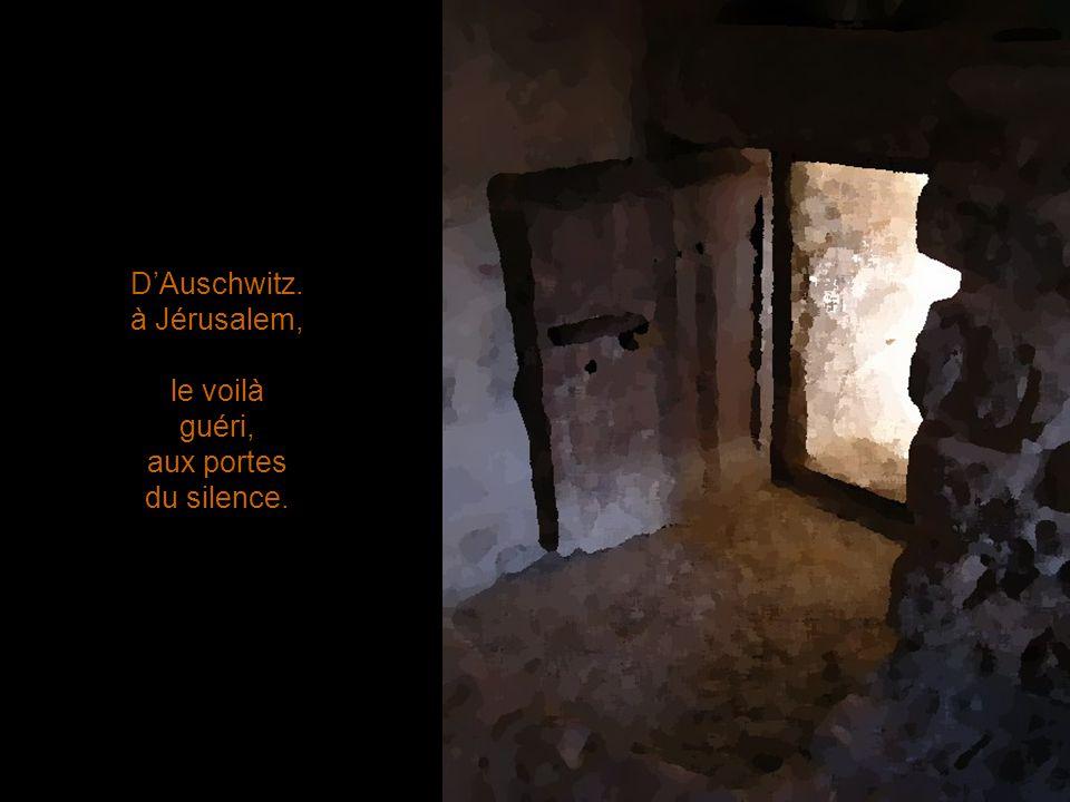 DAuschwitz. à Jérusalem, le voilà guéri, aux portes du silence.