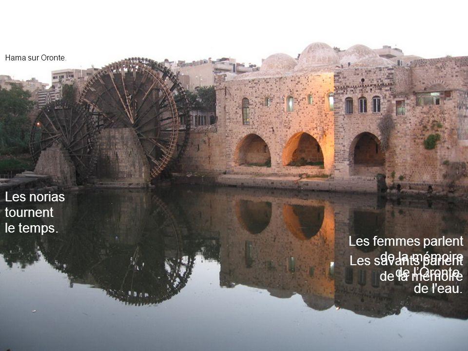 Les savants parlent de la mémoire de l'eau. Les norias tournent le temps. Les femmes parlent de la mémoire de lOronte. Hama sur Oronte.
