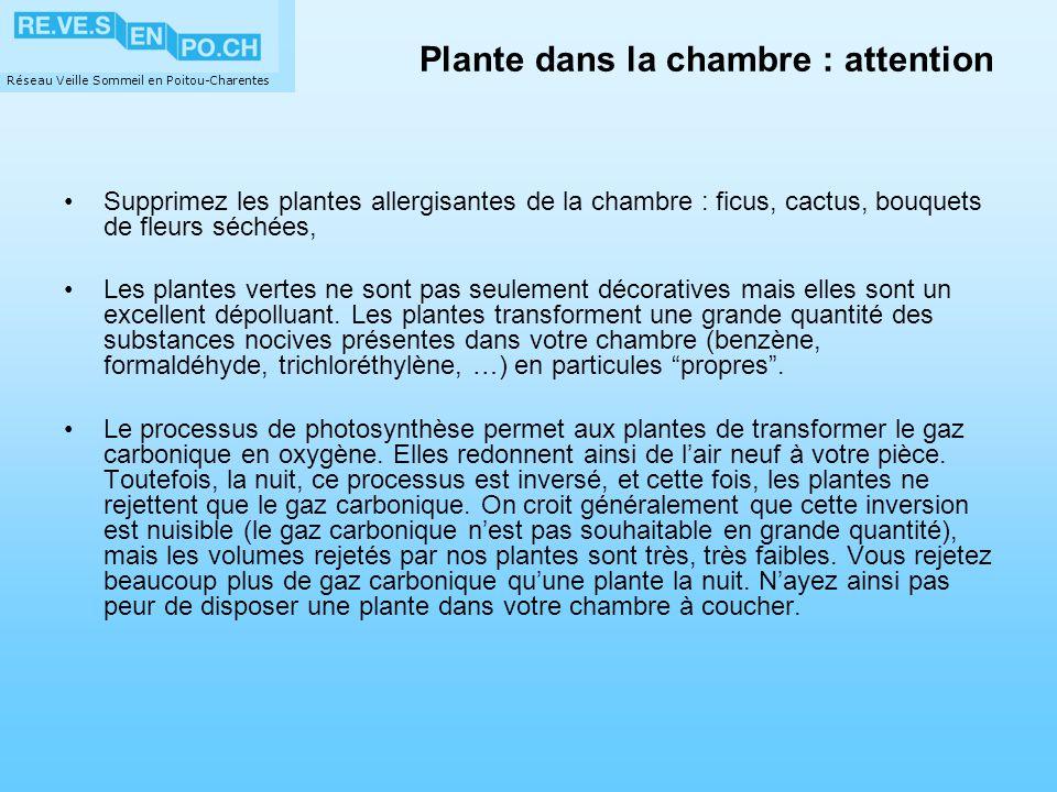 Réseau Veille Sommeil en Poitou-Charentes Plante dans la chambre : attention Supprimez les plantes allergisantes de la chambre : ficus, cactus, bouque