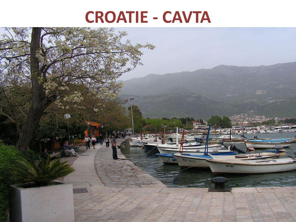CROATIE - CAVTA