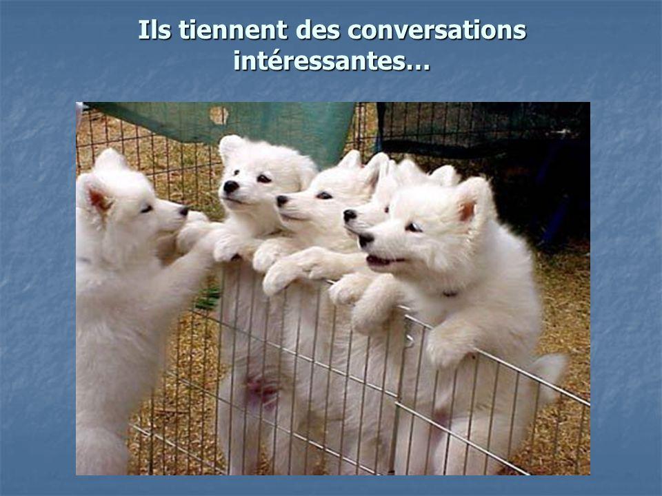 Ils tiennent des conversations intéressantes…