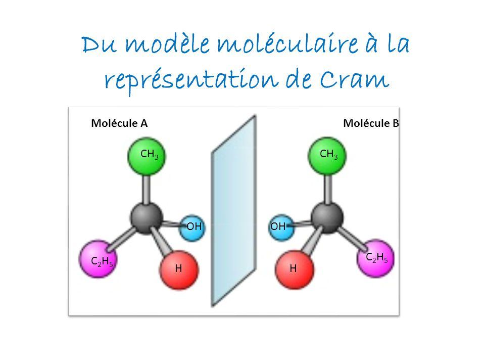 Du modèle moléculaire à la représentation de Cram Molécule AMolécule B H OH CH 3 C2H5C2H5 C2H5C2H5 OH CH 3 H