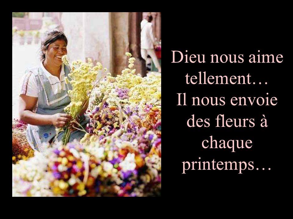 Dieu nous aime tellement… Il nous envoie des fleurs à chaque printemps…