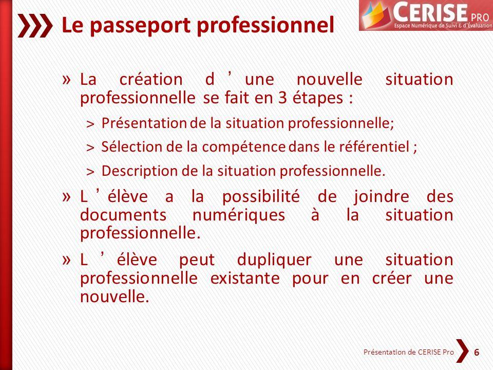 6 Présentation de CERISE Pro Le passeport professionnel » La création dune nouvelle situation professionnelle se fait en 3 étapes : ˃Présentation de l