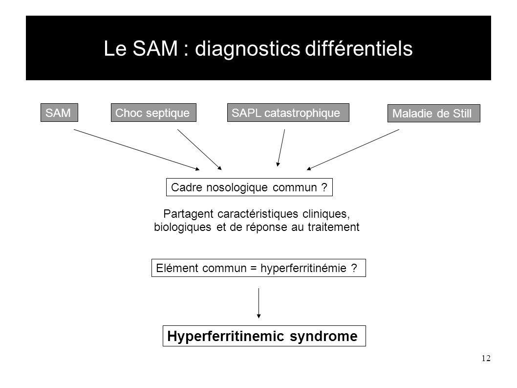 12 Le SAM : diagnostics différentiels SAMChoc septique Maladie de Still SAPL catastrophique Cadre nosologique commun .