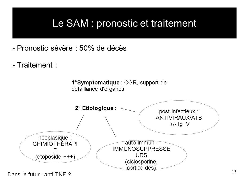 13 Le SAM : pronostic et traitement - Pronostic sévère : 50% de décès - Traitement : 1°Symptomatique : CGR, support de défaillance d organes 2° Etiologique : Dans le futur : anti-TNF .