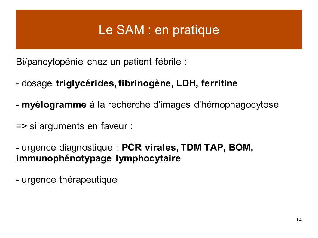 14 Bi/pancytopénie chez un patient fébrile : - dosage triglycérides, fibrinogène, LDH, ferritine - myélogramme à la recherche d images d hémophagocytose => si arguments en faveur : - urgence diagnostique : PCR virales, TDM TAP, BOM, immunophénotypage lymphocytaire - urgence thérapeutique Le SAM : en pratique
