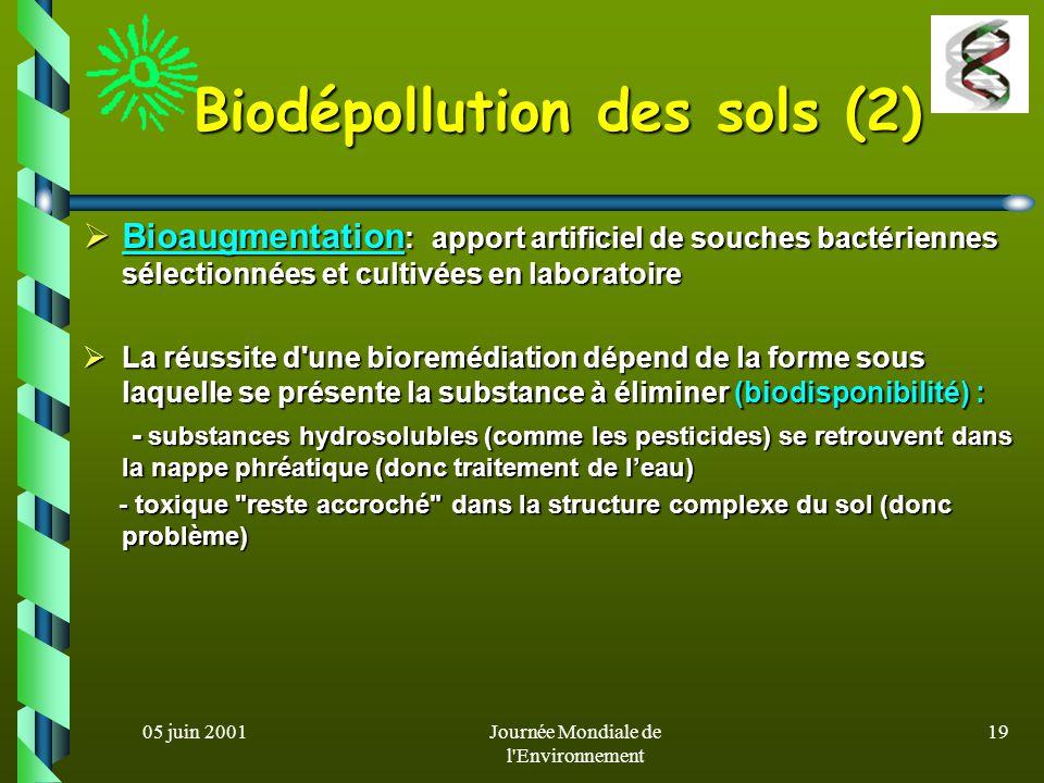 05 juin 2001Journée Mondiale de l'Environnement 18 Biodépollution des sols le processus le plus naturel de dépollution d'un sol fait intervenir les mi