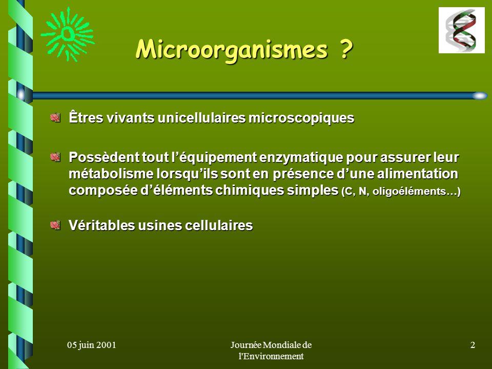 05 juin 2001Journée Mondiale de l Environnement 1 Les microbes au secours de lenvironnement Amina HELLAL ENP