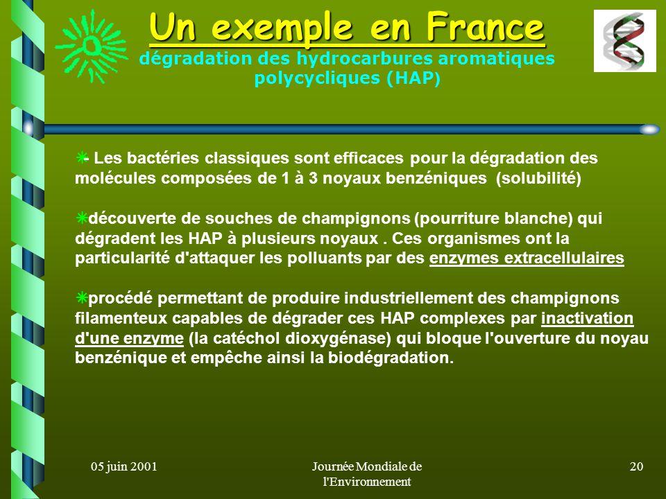 05 juin 2001Journée Mondiale de l'Environnement 19 Biodépollution des sols (2) Bioaugmentation : apport artificiel de souches bactériennes sélectionné