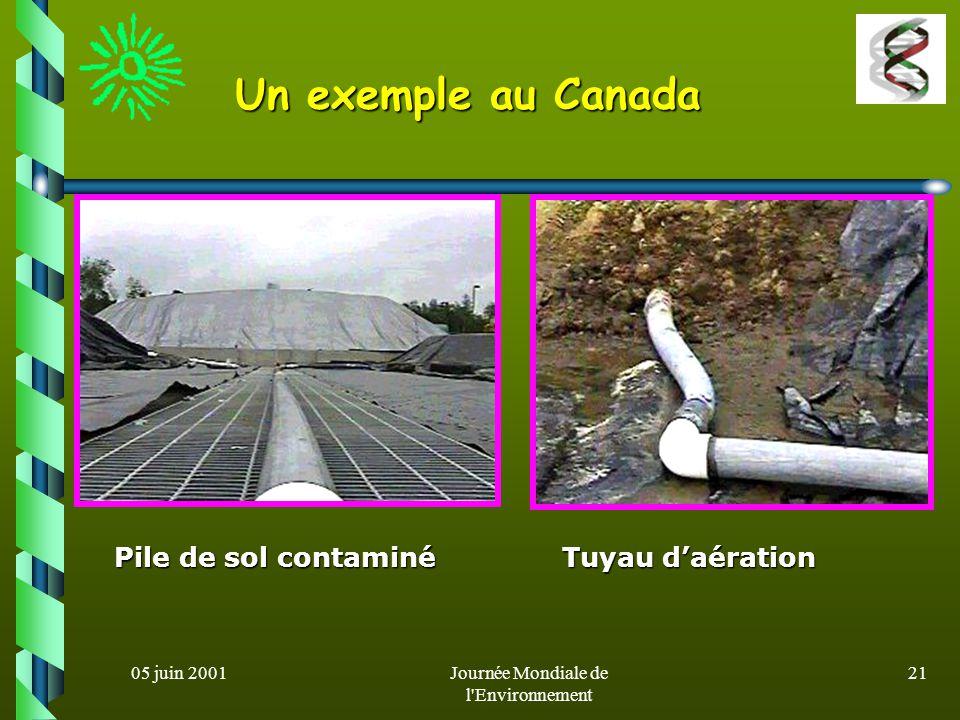 05 juin 2001Journée Mondiale de l'Environnement 20 Un exemple en France Un exemple en France dégradation des hydrocarbures aromatiques polycycliques (