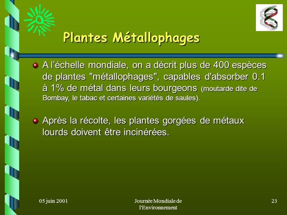 05 juin 2001Journée Mondiale de l Environnement 22 Cas des métaux lourds Filtres souillés par les cendres sont traités par biolixiviation (immersion dans des solutions contenant des thiobactéries, des champignons - Aspergillus niger-): Filtres souillés par les cendres sont traités par biolixiviation (immersion dans des solutions contenant des thiobactéries, des champignons - Aspergillus niger-): - cendres peuvent servir de charges pour matériaux de construction - cendres peuvent servir de charges pour matériaux de construction - métaux extraits réutilisés.