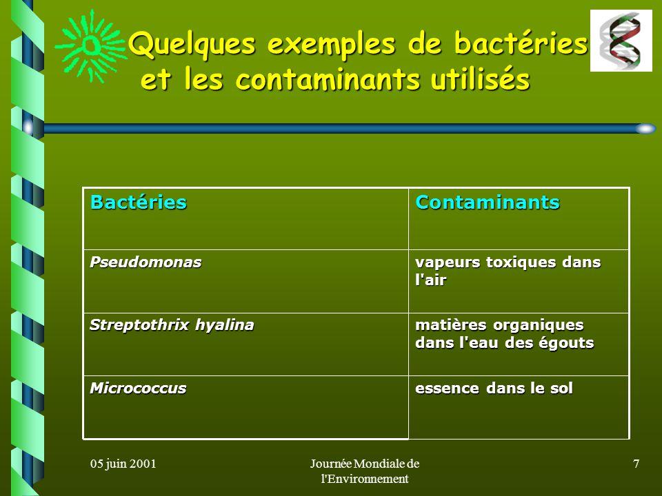 05 juin 2001Journée Mondiale de l Environnement 6 Avant que la biotechnologie nous offre des bactéries gloutonnes pour décontaminer, comment nettoyait-on l air, l eau et le sol.