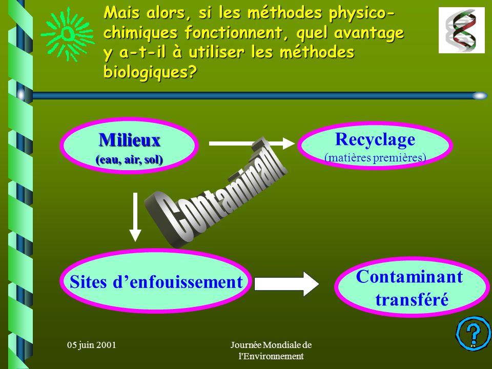 05 juin 2001Journée Mondiale de l Environnement 18 Biodépollution des sols le processus le plus naturel de dépollution d un sol fait intervenir les micro-organismes telluriques: bioremédiation (utilisation des polluants comme source de C et/ou dE) Le développement de nouveaux procédés biotechnologiques pour épurer les sols de toxiques vise le plus souvent à augmenter les propriétés dépolluantes de microorganismes existants: biostimulation 1.