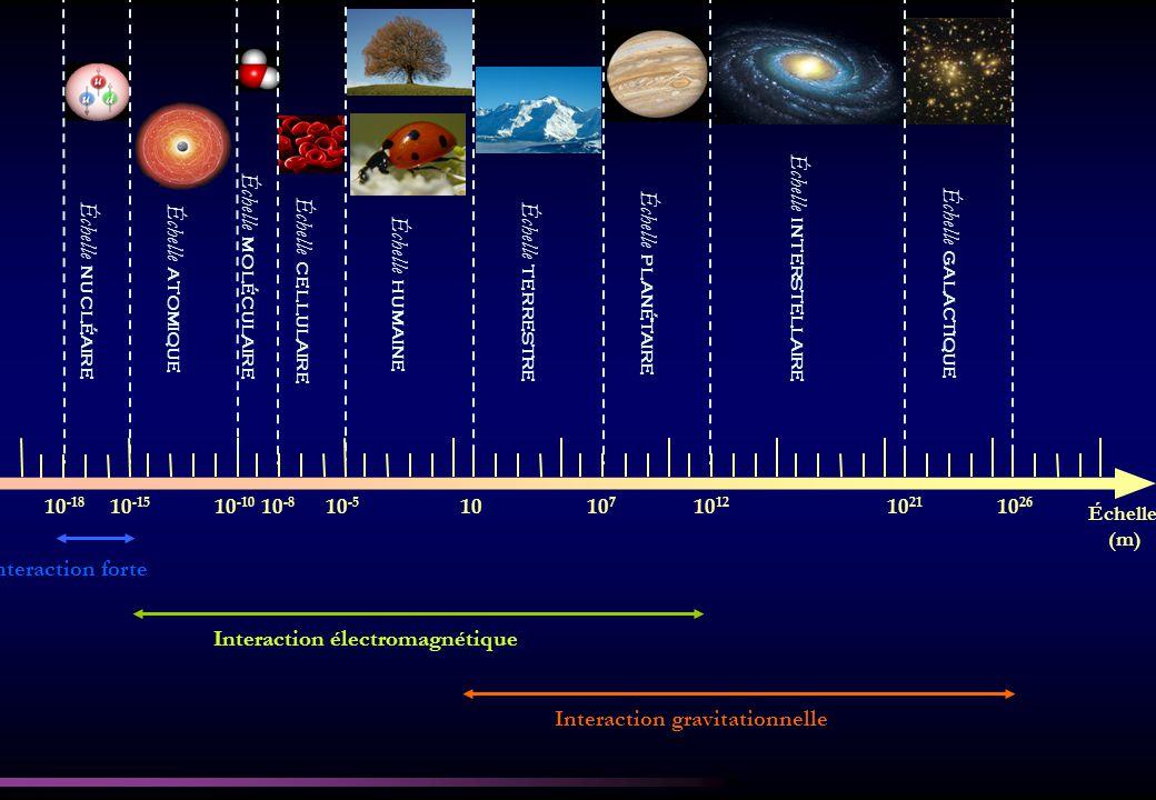 10 -18 10 -15 10 -10 10 -8 10 -5 1010 7 10 12 10 21 10 26 Interaction forte Interaction électromagnétique Interaction gravitationnelle Échelle (m) Échelle nucléaire Échelle atomique Échelle moléculaire Échelle cellulaire Échelle humaine Échelle terrestre Échelle planétaire Échelle interstellaire Échelle galactique