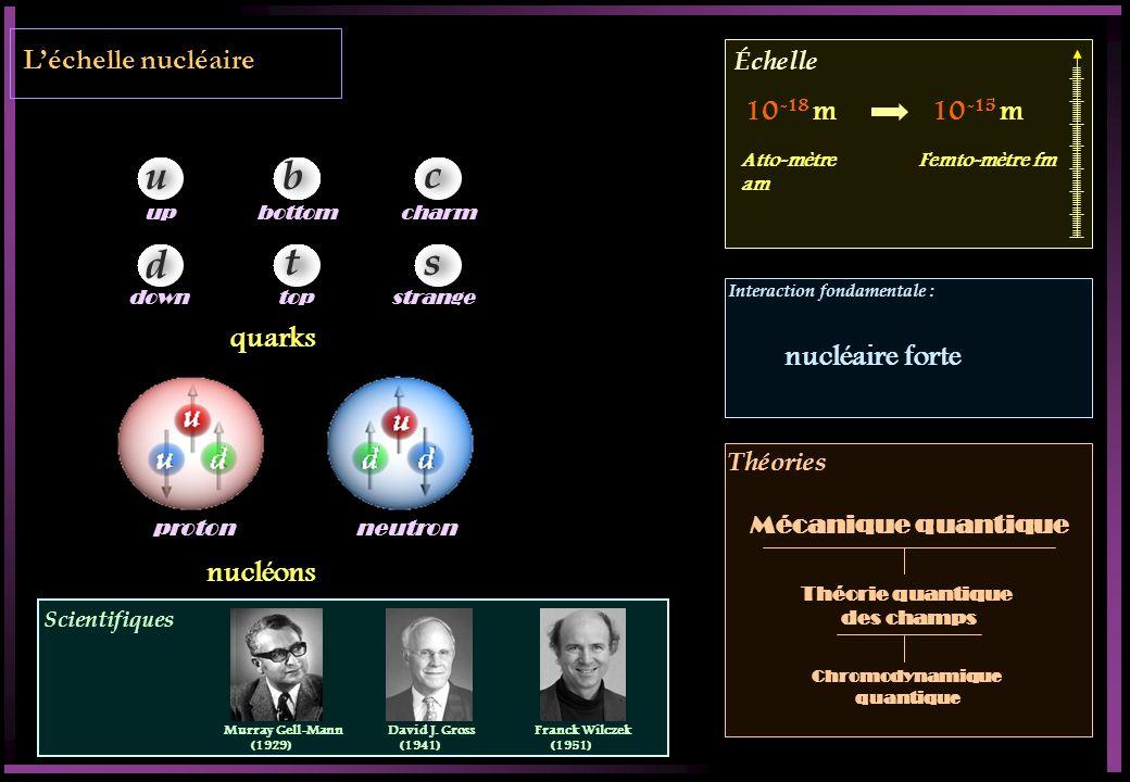Léchelle nucléaire Scientifiques Échelle Interaction fondamentale : Théories proton neutron quarks u d b t c s up down bottomcharm strangetop nucléons 10 -18 m10 -15 m Atto-mètre am Femto-mètre fm nucléaire forte Théorie quantique des champs Chromodynamique quantique Murray Gell-Mann (1929) David J.