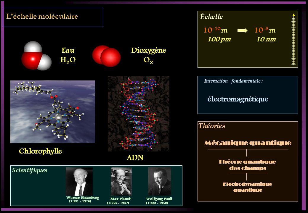 Scientifiques Échelle Interaction fondamentale : Théories Léchelle moléculaire Eau H 2 O Dioxygène O 2 Chlorophylle ADN 10 -10 m10 -8 m 100 pm10 nm électromagnétique Théorie quantique des champs Électrodynamique quantique Mécanique quantique Werner Heisenberg (1901 - 1976) Max Planck (1858 - 1947) Wolfgang Pauli (1900 - 1958)