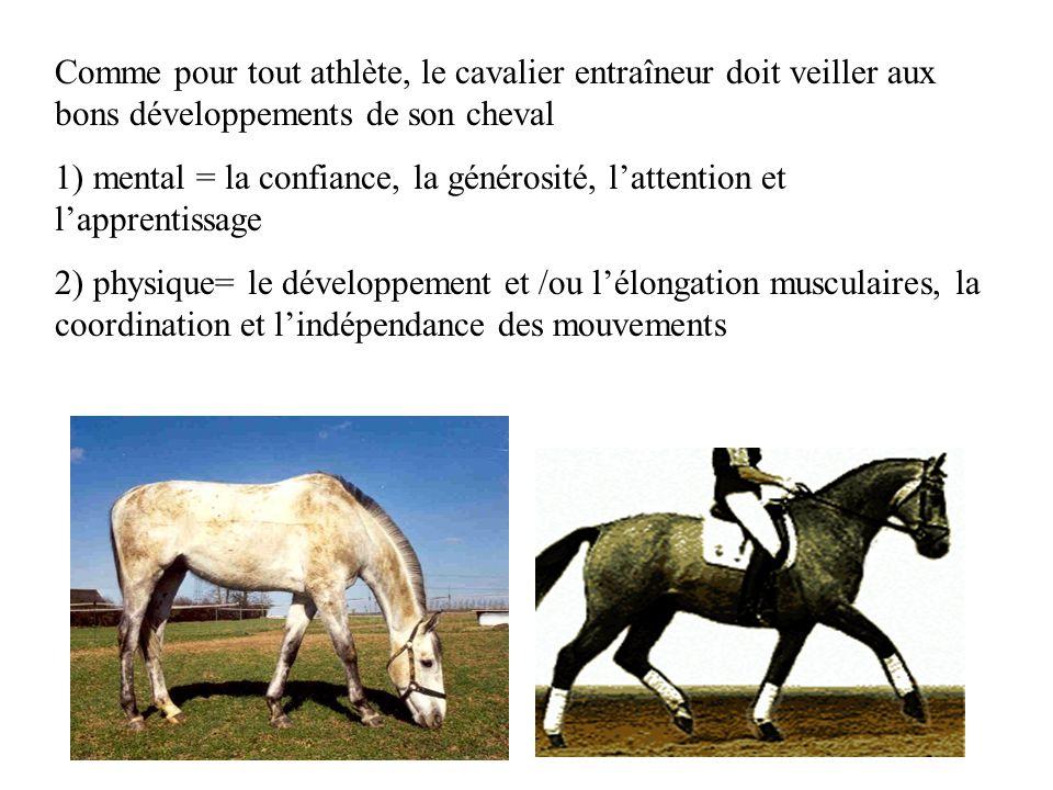 Comme pour tout athlète, le cavalier entraîneur doit veiller aux bons développements de son cheval 1) mental = la confiance, la générosité, lattention et lapprentissage 2) physique= le développement et /ou lélongation musculaires, la coordination et lindépendance des mouvements