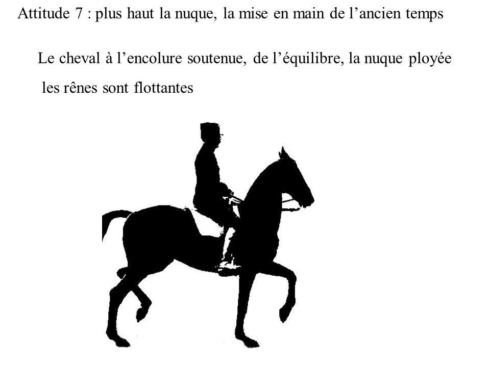Attitude 7 : plus haut la nuque, la mise en main de lancien temps Le cheval à lencolure soutenue, de léquilibre, la nuque ployée les rênes sont flotta