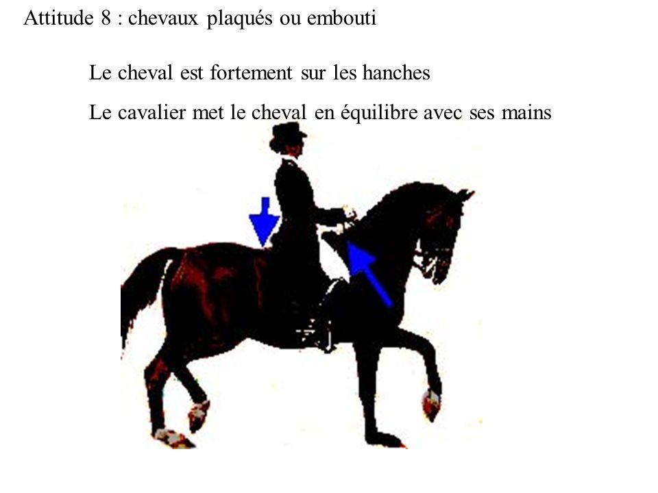 Attitude 8 : chevaux plaqués ou embouti Le cheval est fortement sur les hanches Le cavalier met le cheval en équilibre avec ses mains