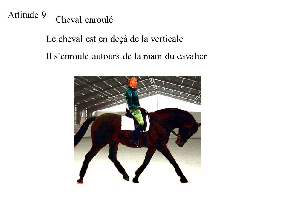 Attitude 9 Cheval enroulé Le cheval est en deçà de la verticale Il senroule autours de la main du cavalier