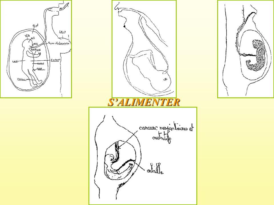 SALIMENTER