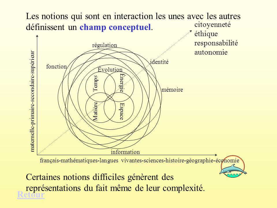 Les notions qui sont en interaction les unes avec les autres définissent un champ conceptuel. Certaines notions difficiles génèrent des représentation