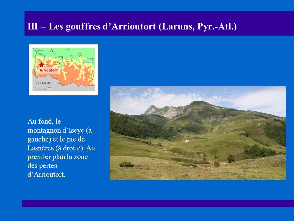 III – Les gouffres dArrioutort (Laruns, Pyr.-Atl.) Au fond, le montagnon dIseye (à gauche) et le pic de Lasnères (à droite).