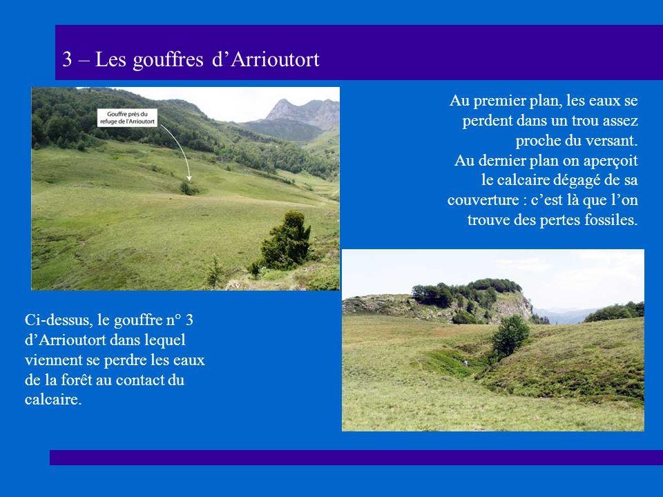 3 – Les gouffres dArrioutort Ci-dessus, le gouffre n° 3 dArrioutort dans lequel viennent se perdre les eaux de la forêt au contact du calcaire.
