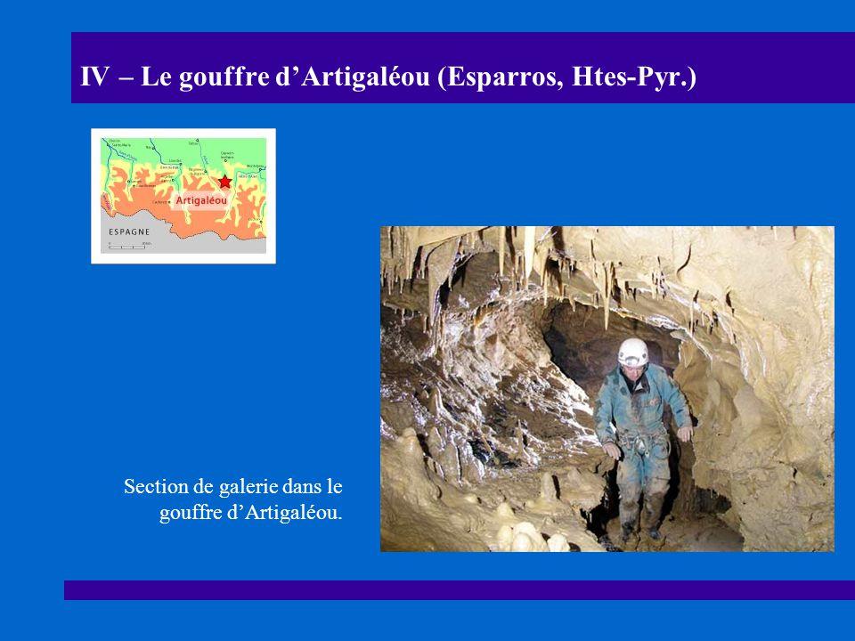 IV – Le gouffre dArtigaléou (Esparros, Htes-Pyr.) Section de galerie dans le gouffre dArtigaléou.
