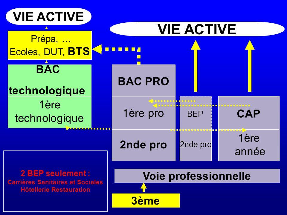 3ème 2nde pro BAC technologique VIE ACTIVE Voie professionnelle 1ère technologique 2nde pro BAC PRO 1ère pro 1ère année BEP CAP Prépa, … Ecoles, DUT,