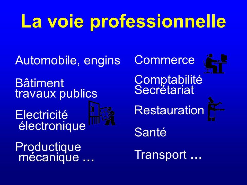 La voie professionnelle Automobile, engins Bâtiment travaux publics Electricité électronique Productique mécanique … Commerce Comptabilité Secrétariat