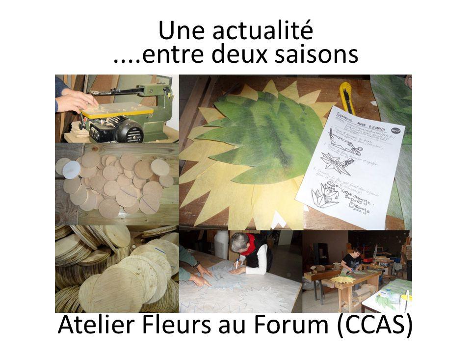 Une actualité....entre deux saisons Atelier Fleurs au Forum (CCAS)