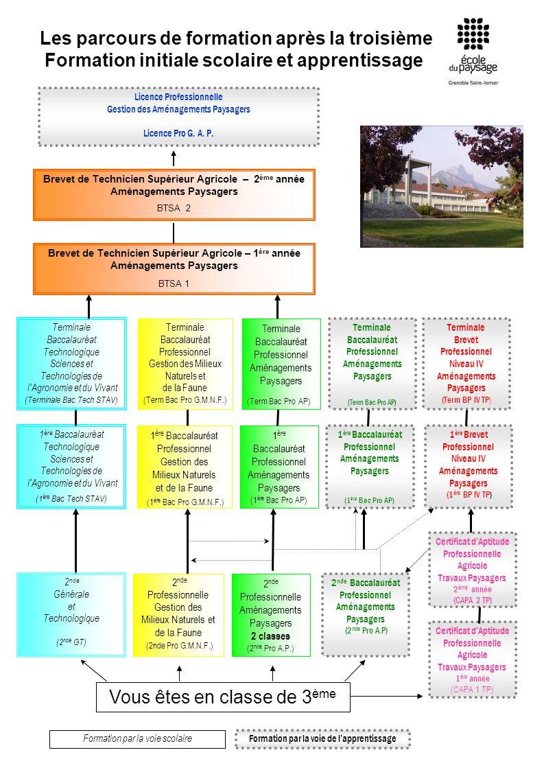 Les parcours de formation après la troisième Formation initiale scolaire et apprentissage Formation par la voie scolaire Formation par la voie de lapp