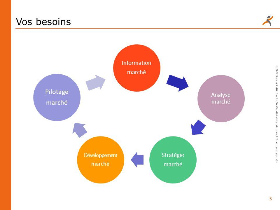 5 © 2007 Secteur Public S.A.S - Société détudes et de conseil. Tous droits réservés. Vos besoins Information marché Analyse marché Stratégie marché Dé
