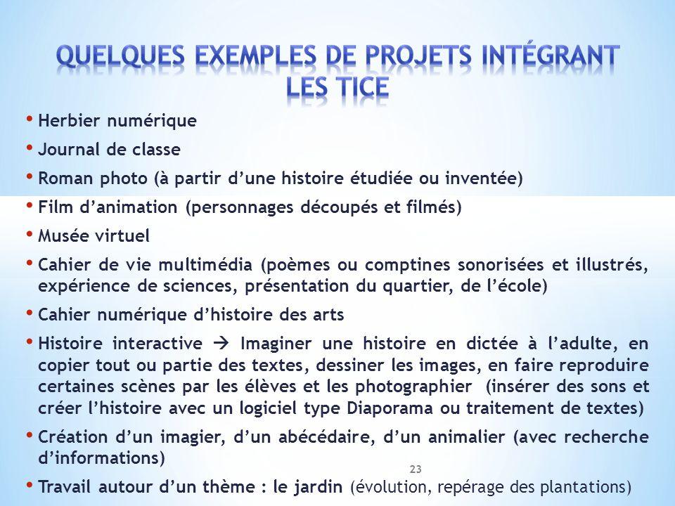 Herbier numérique Journal de classe Roman photo (à partir dune histoire étudiée ou inventée) Film danimation (personnages découpés et filmés) Musée vi