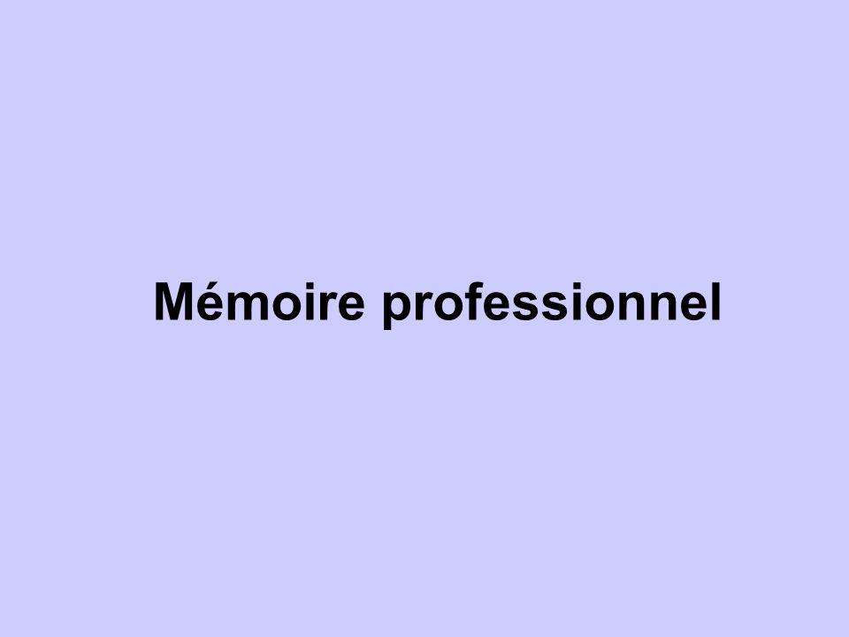 Mémoire professionnel