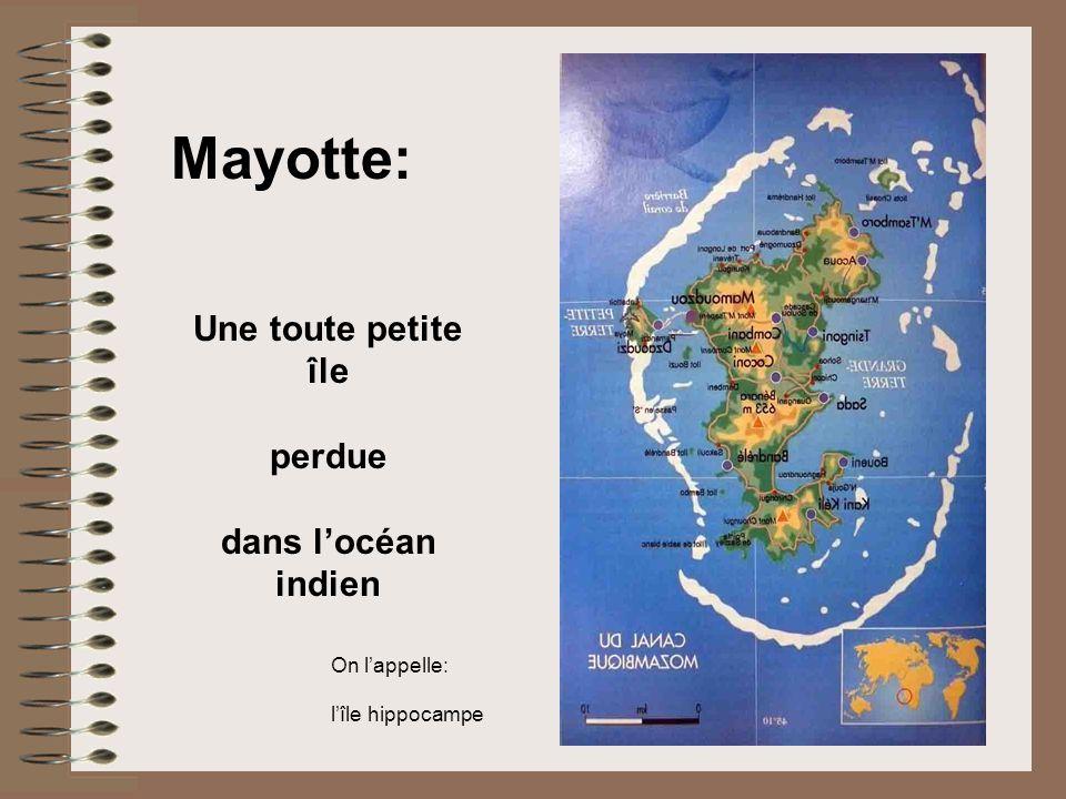 Mayotte: Une toute petite île perdue dans locéan indien On lappelle: lîle hippocampe