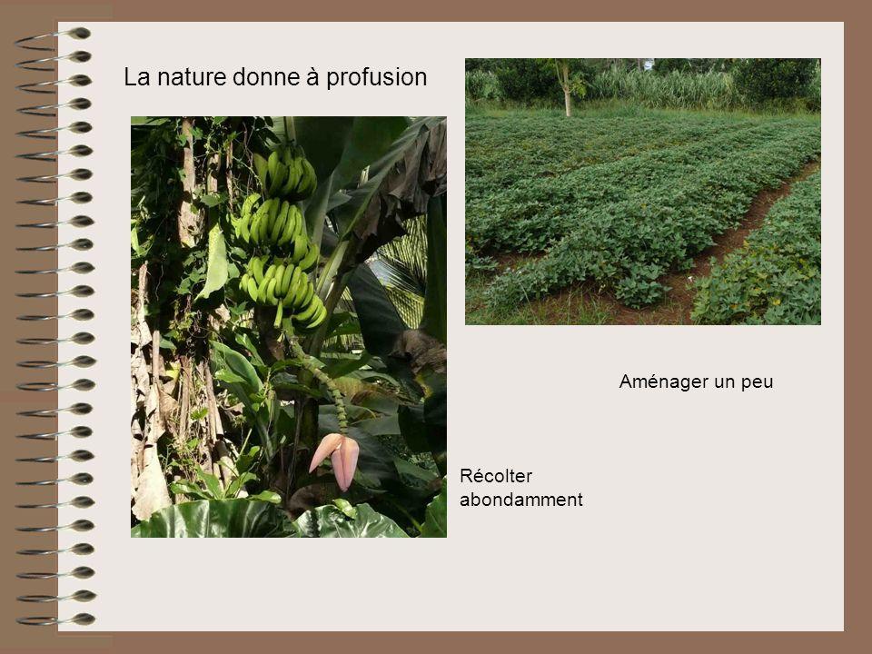 La nature donne à profusion Aménager un peu Récolter abondamment