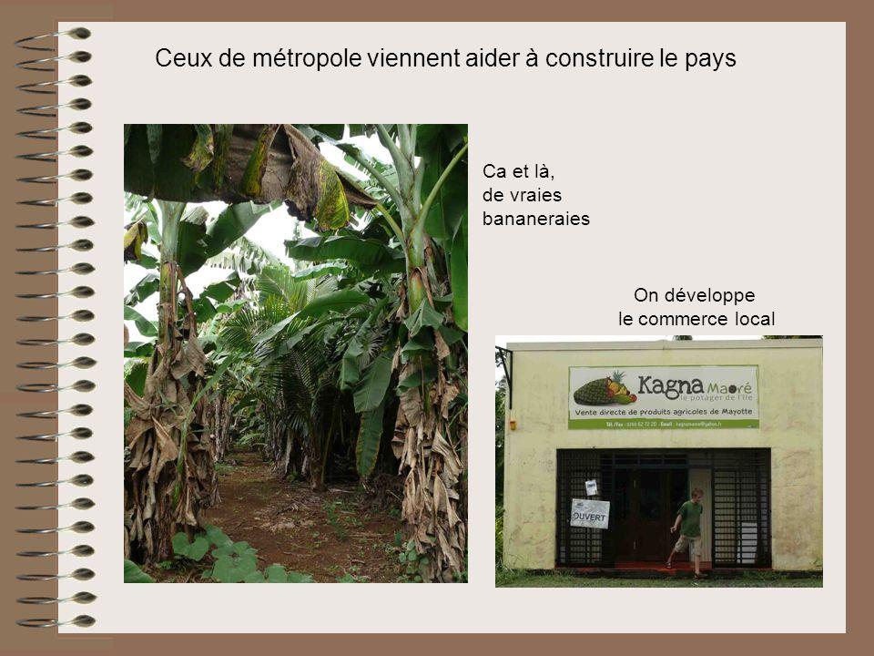 Ceux de métropole viennent aider à construire le pays Ca et là, de vraies bananeraies On développe le commerce local