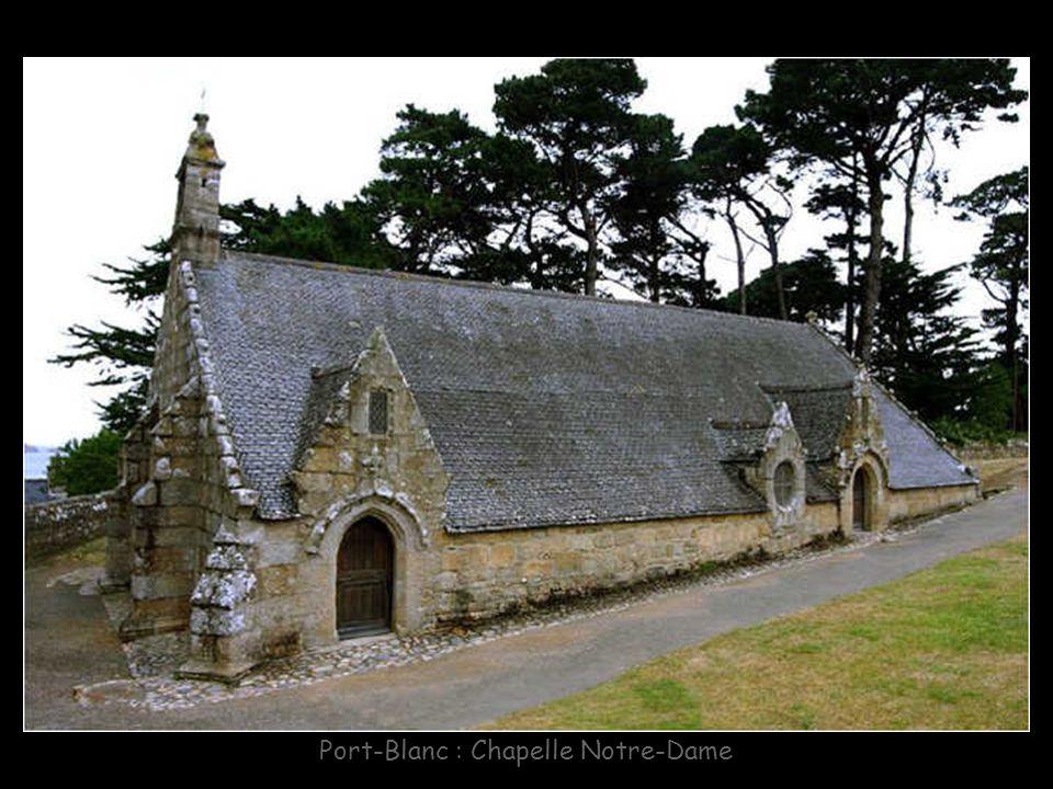 Plougrescant : Pointe du Chateau