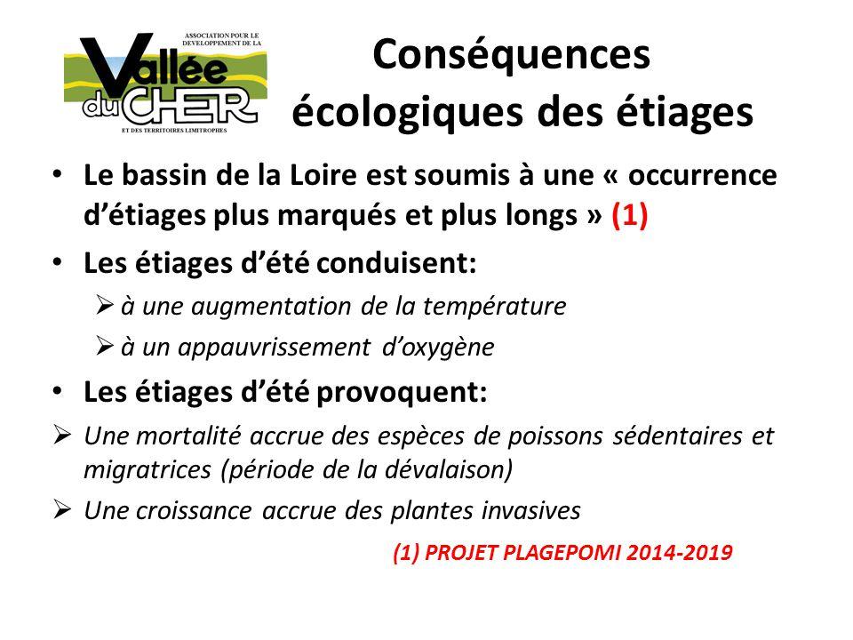 Conséquences écologiques des étiages Le bassin de la Loire est soumis à une « occurrence détiages plus marqués et plus longs » (1) Les étiages dété co