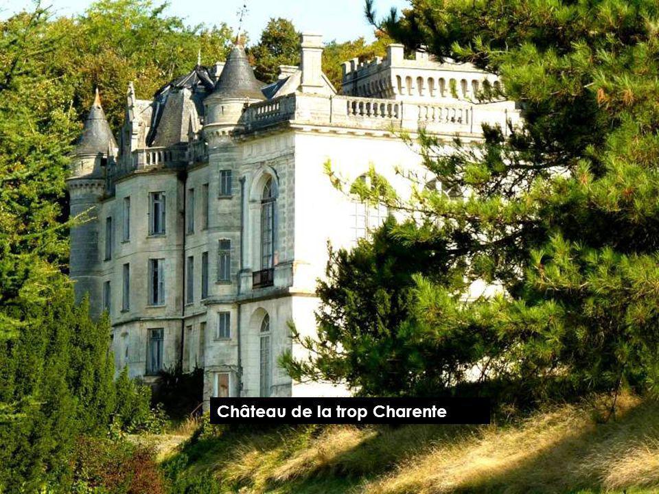Château de la Charente LIGNIÈRE