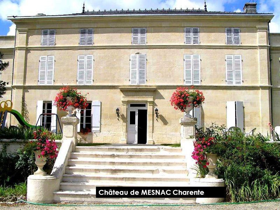 Château de la Charente ROUCHEFOURCAULD