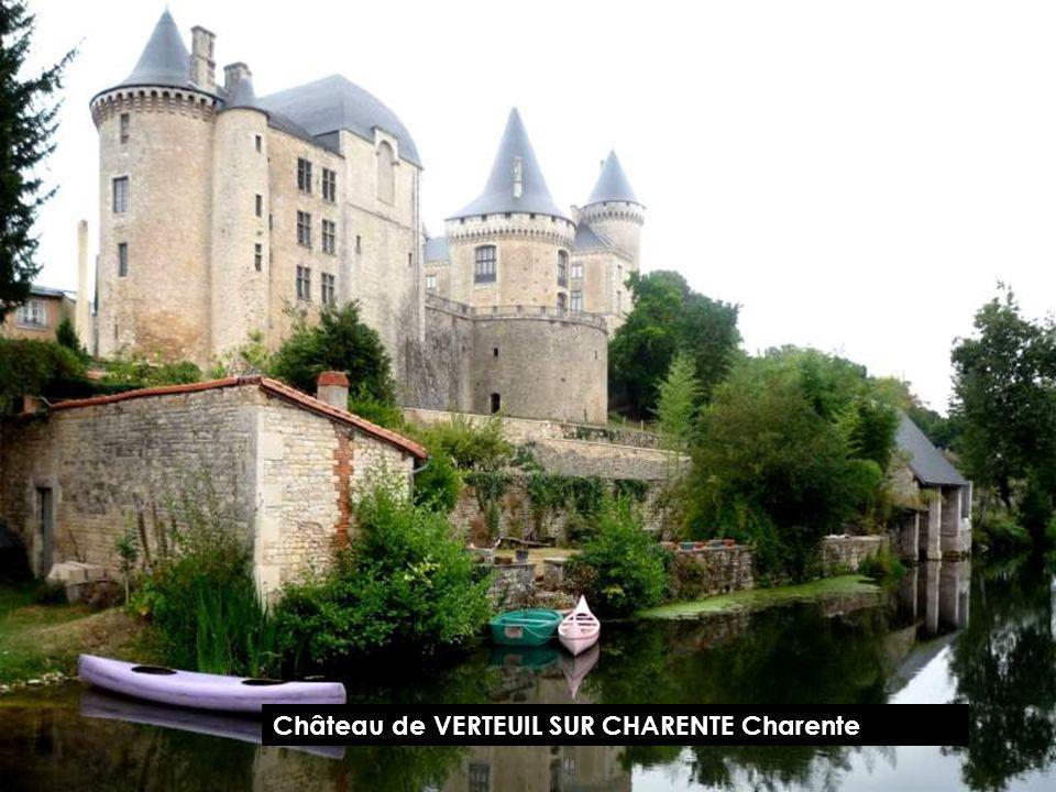 Château de SAINT BRUSSAC Charente