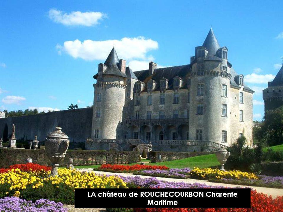 Château de VIGNY Charente