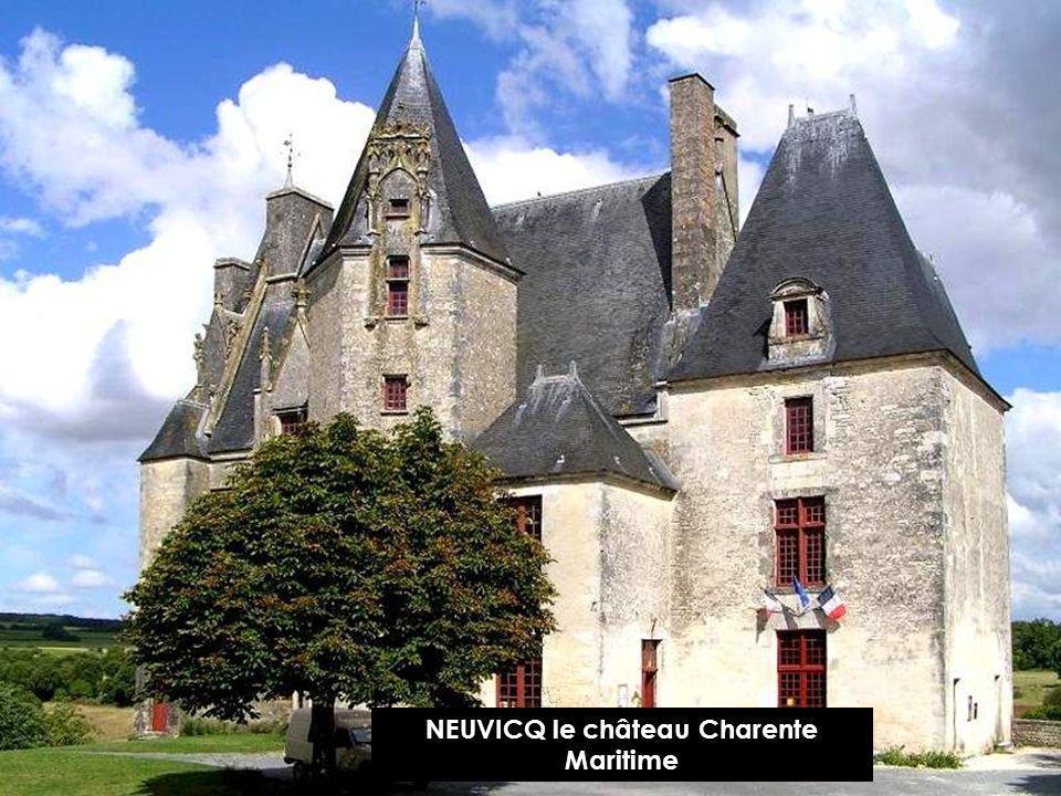 LA château de ROUCHECOURBON Charente Maritime